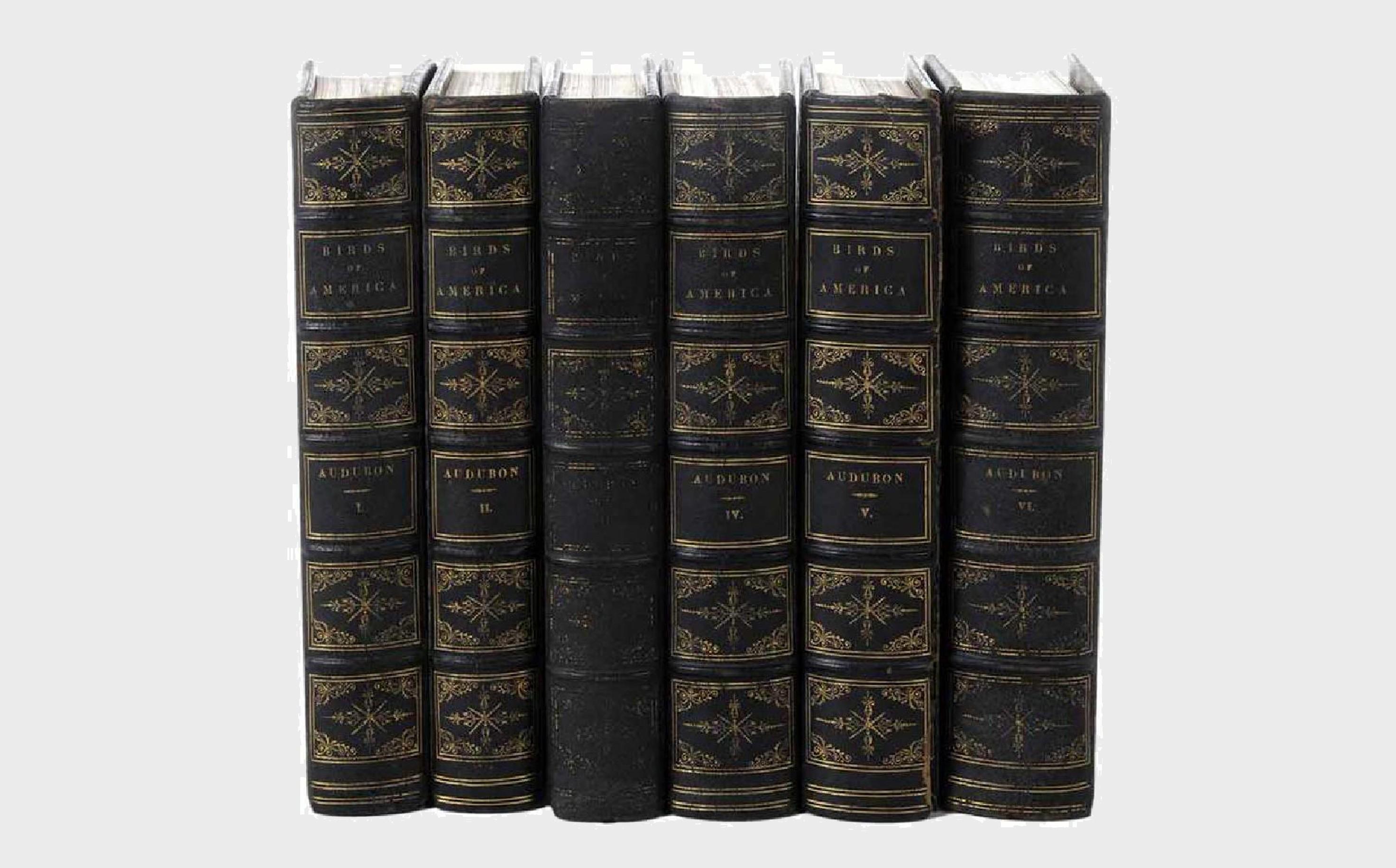 Audubon, Birds of America, Six Volumes